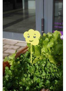 Reynald la salade