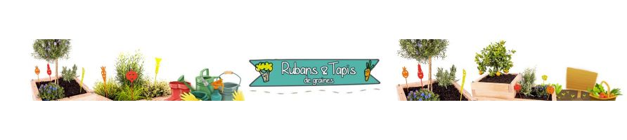 Tapis & Rubans Graines